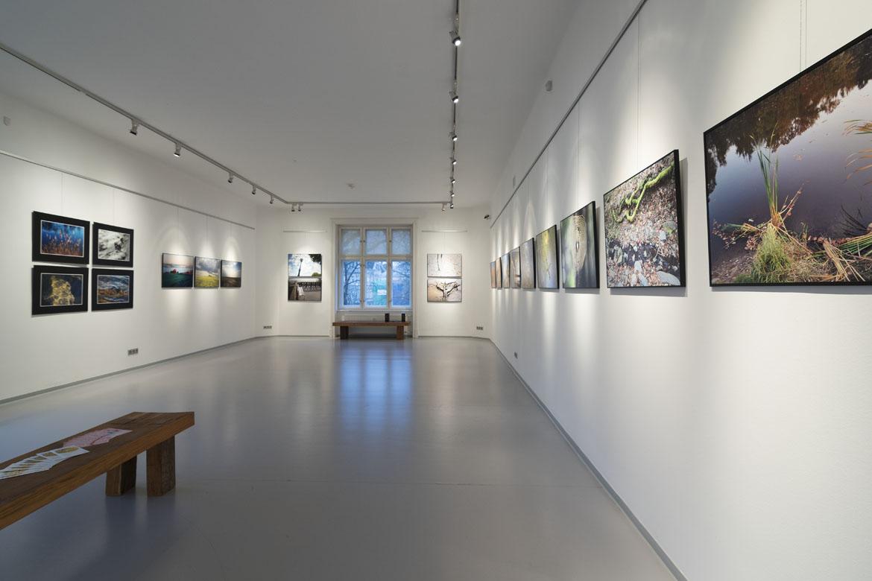 PAVEL MELECKÝ, DOTYKY PŘÍRODY / výstava / 9. 3. – 2. 4. 2017 // Galerie OD